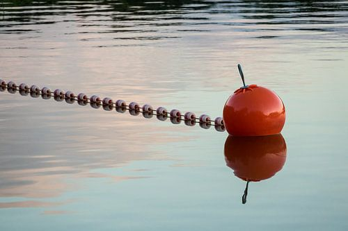 Buoy on a lake in the evening