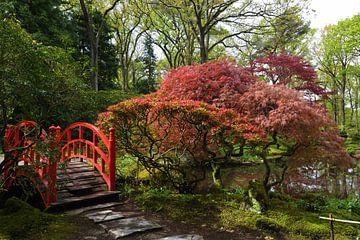 Brug in Japanse tuin  von Georges Hoeberechts