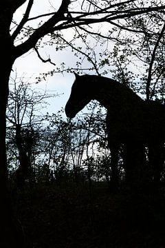 Paarden Silhouet van Hanneke Duifhuize