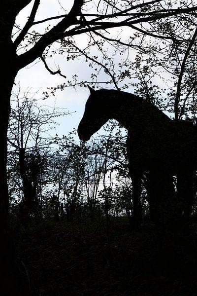 Paarden Silhouet van FotoGraaG Hanneke