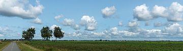 Nederland per Fiets von Kees Rustenhoven