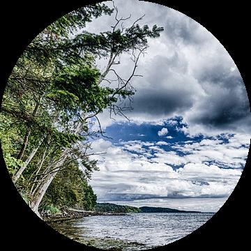 Vejle Fjord - Gezicht op de kust tussen Fakkegrav en Rosenvold van Tony Buijse