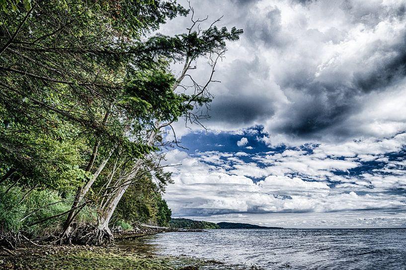 Vejle Fjord - Gezicht op de kust tussen Fakkegrav en Rosenvold sur Tony Buijse