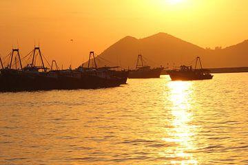 Schepen bij zonsondergang Hongkong van Inge Hogenbijl