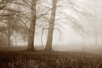 Nebel am Herbsttag von Yvonne Smits