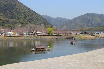 Japanse rivieren van Mitch den Exter
