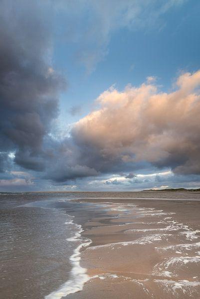 Maasvlakte 4