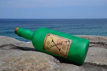 Message in a Bottle van Wessel Smit