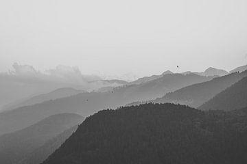 Capriana-Gebirge von Daan Nieuwland