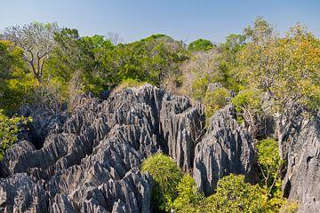 De kleine Tsingy von Dennis van de Water