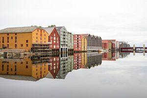 Trondheim norway van