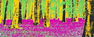 Hallerbos in bloei van Paul Roholl