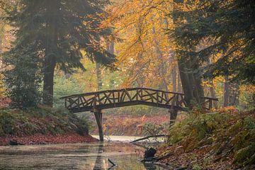 Herbst in Slochterbos von Marga Vroom
