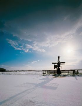 Weidemolentje in de sneeuw van Rene van der Meer