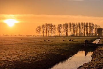 Zonsopkomst in de polder van Stephan Neven
