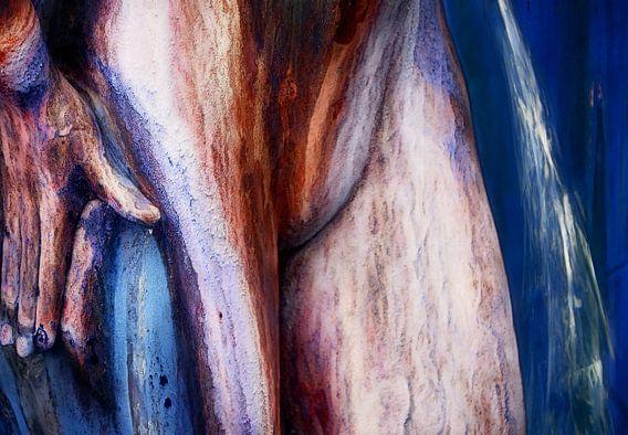 Vrouwelijk lichaam 1 van Marcel van Balken