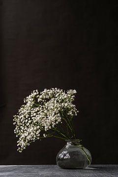 Fotodruck | Schleierkraut | Modernes Stillleben | Botanisch von Jenneke Boeijink