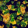 Hawaï nr. 2 van Andreas Wemmje thumbnail