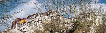 Panorama van het Potala paleis in Lhasa, Tibet van Rietje Bulthuis