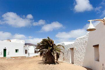 Straat met witte huizen en een palmboom in Caleto de Sebo van Lanzarote van Peter de Kievith Fotografie