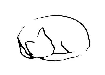 Schlafende Katze von Qeimoy