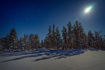 Finnisch-Lappland im Winter Nacht von Nana Design