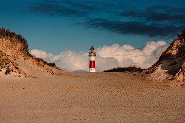 Der Leuchtturm von Ameland in den Dünen von Lindy Schenk-Smit