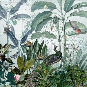 Trotse pauw in tropisch paradijs van christine b-b müller
