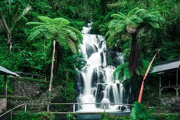 tropische waterval op Bali van road to aloha
