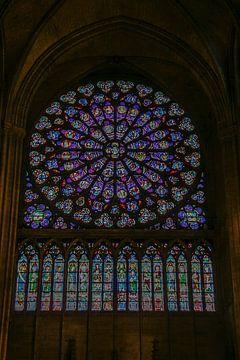 célèbre vitrail de Notre-Dame de Paris sur Eric van Nieuwland