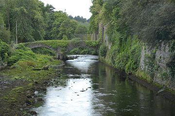 Northern-Irish landscaping van Simone van der Heide