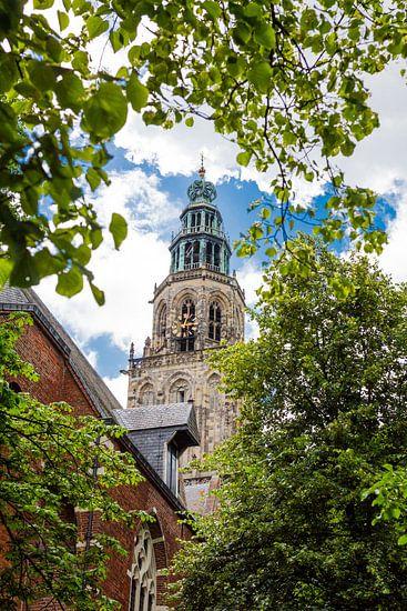 Martinitoren door de bomen van Iconisch Groningen