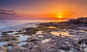 Sunset bij Paphos, Cyprus van