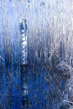 Waterstand van Mark Nieuwenhuizen