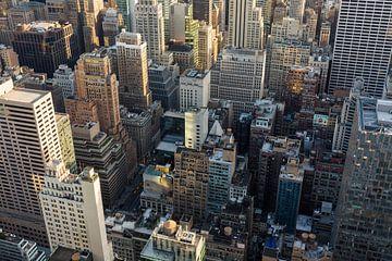 New York von Joni Israeli