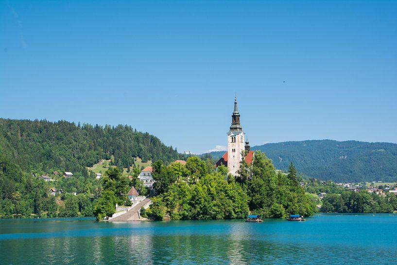 Kerk op het meer Bled in Slovenie van Lifelicious