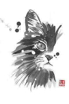 half cat sur philippe imbert