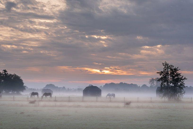 Zonsopkomst in de mist met paarden van Atelier van Saskia