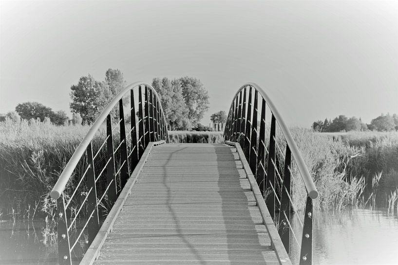 Brücke von johanna hibma