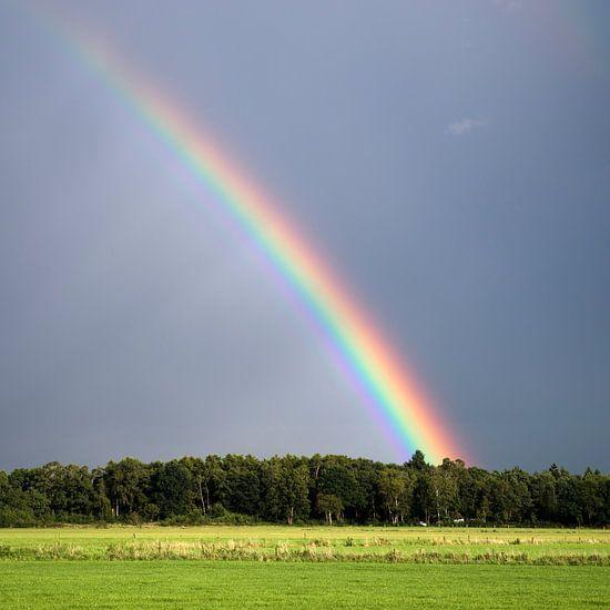 Regenboog Zonnestralen