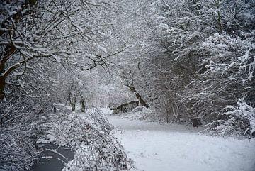 Verträumte Winterlandschaft mit Bachlauf van Thomas Wagner