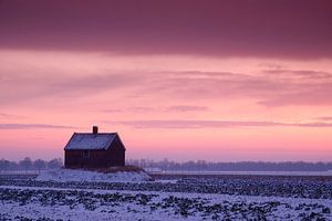 Winterlandschap Schuur op Terp in de Sneeuw bij zonsopkomst of zonsopgang, Dordrecht, Nederland van