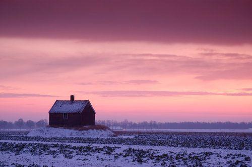 Winterlandschap Schuur op Terp in de Sneeuw bij zonsopkomst of zonsopgang, Dordrecht, Nederland van Frank Peters