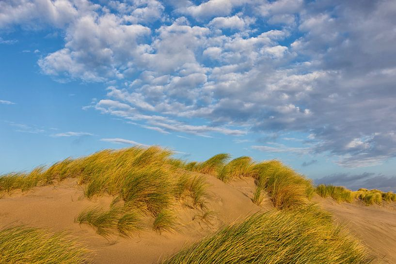 Duinen helmgras en wolken lucht  van Bram van Broekhoven