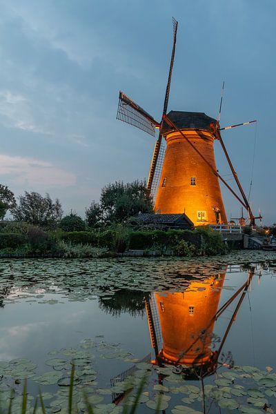 Kinderdijk in de spotlights van Mark den Boer
