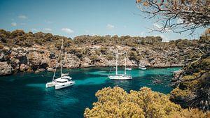 Cala pi, Mallorca van Rob van Dongen