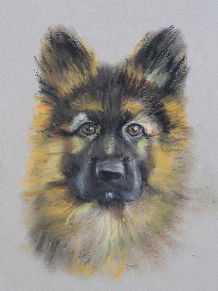 Herdershond Portret | Duitse Herder van Henriëtte Mosselman