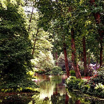 Forest (Botanischer Garten in Bremen) van Andreas Wemmje