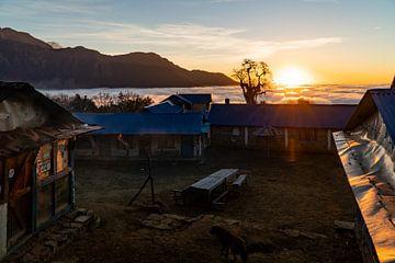 Sonnenaufgang im Flachlager des Mardi-Himal-Trekkings in Nepal von Twan Bankers