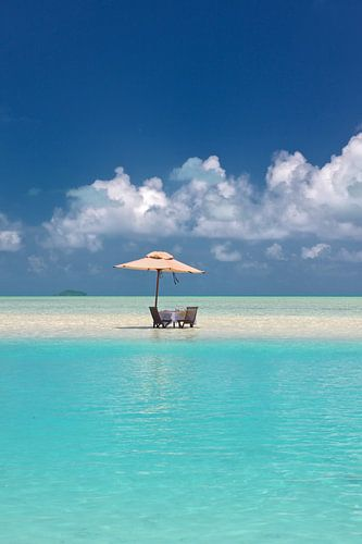 Lunch in het paradijs (Turquoise Delight)